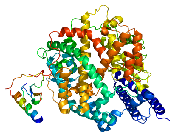Protein_ACE2_PDB_1r42